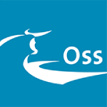 openbare verlichting gemeente oss logo
